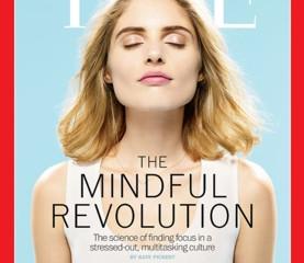 Meta-Meditation: A Skeptic Meditates on Meditation