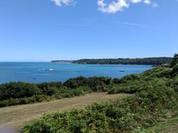 Paignton Views