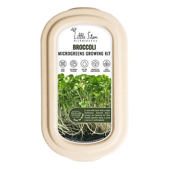 Microgreens Growing Kit - Broccoli