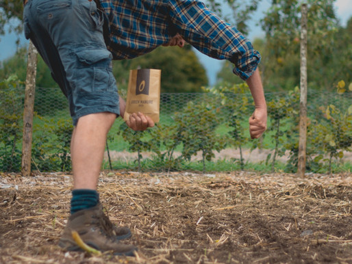 Recommended seed suppliers for market gardeners