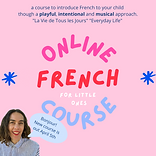 OnlineCourse3.png
