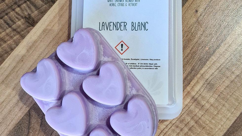 Lavender Blanc Clamshell