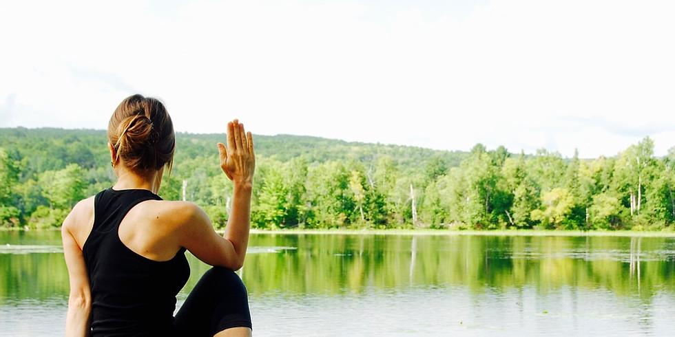 Move Better, Feel Better Yoga Series | Dina Crosta