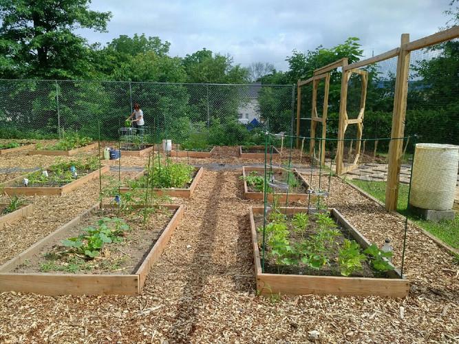 Bound Brook Community Garden
