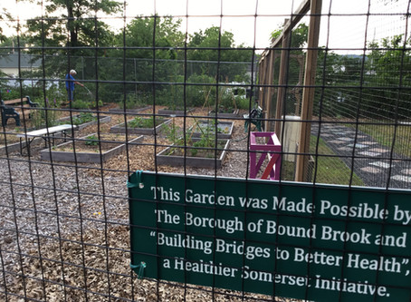 The Bound Brook Community Garden is in full swing for the summer!