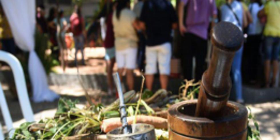 Easy Cold Brew Tea / Té Fácil de Preparar en Frío | Bilingual Program