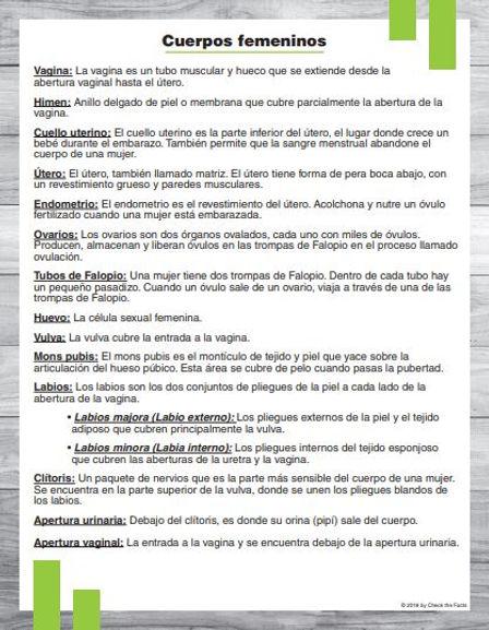Span Anatomy 4.JPG
