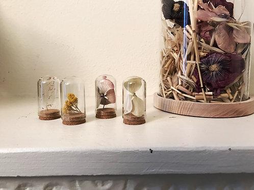 Petite fiole de fleurs séchées et ses graines, une attention symbolique