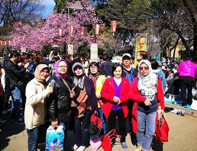 Cherry Blossoms Tour #PTB