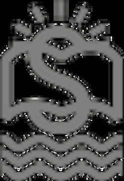steam-white-Custom_edited