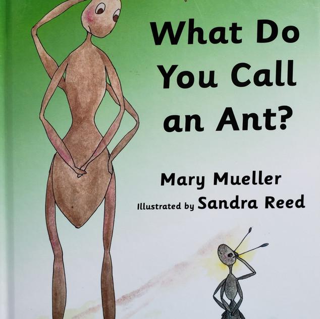 Ant Book - Sandy.jpg