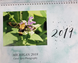 Calendar 2019 - Carol Spry Photography.j