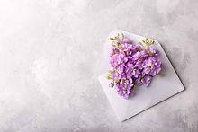 flowers-in-an-envelope-PYMC6FU.jpg
