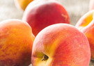 sweet-peaches-fruit-BQWYP9N.jpg