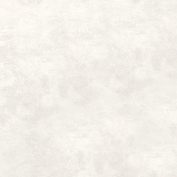 AMISA #AKDXBUAE4071