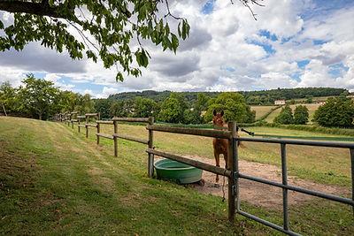 Terrain maison à vendre dans proche de Cluny secteur Valouzin par Story's Immobilier