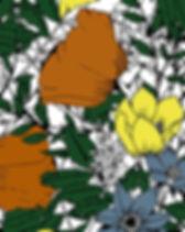 thumbnail_12.1.jpg