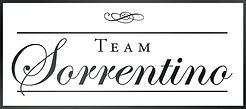 TeamSorrentino_Logo_Inverted.jpg
