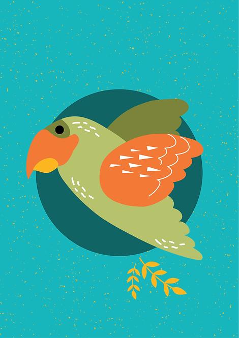 Papagaio - P19039