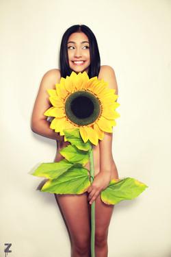 kianisunflower