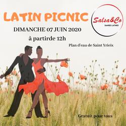 latin picnic (3)