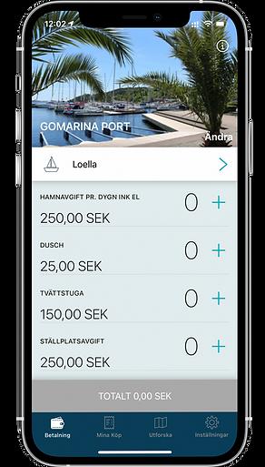 App_front_SV 2021.png