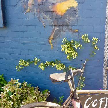 ginger bees cafe   Kingston Upon Thames, UK