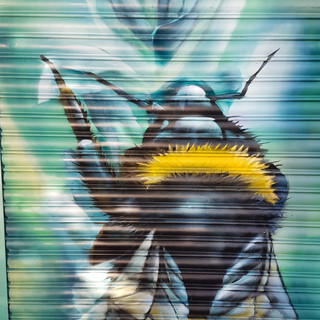 ginger bees cafe | Kingston Upon Thames, UK