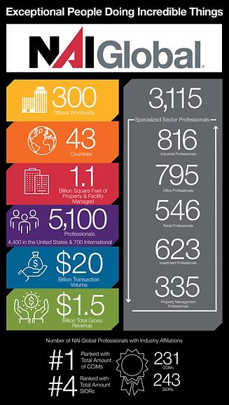 NAI Infographic Stats 2021.png