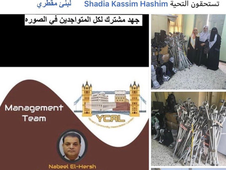 Delivered items for disabled in Aden