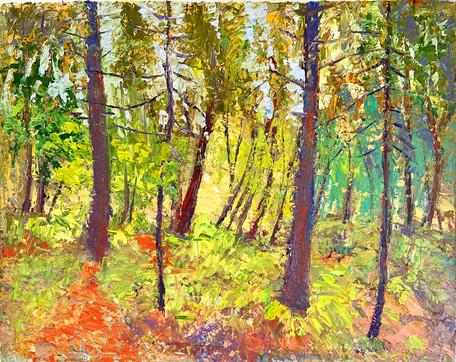 Woodland Colors