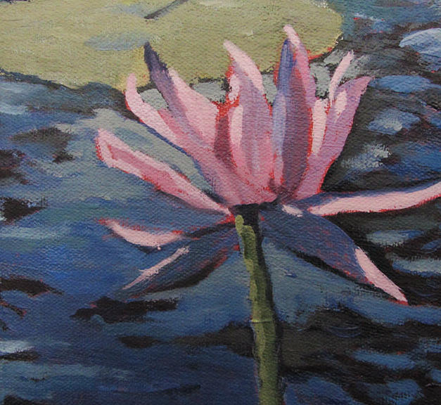 Lily and Lotus Detail