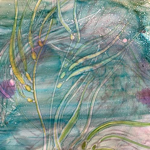 Jennifer Maffett: Twilight Kelp