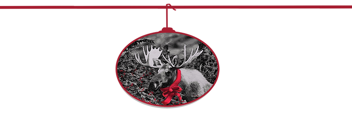 Christmas Moose only copy.png