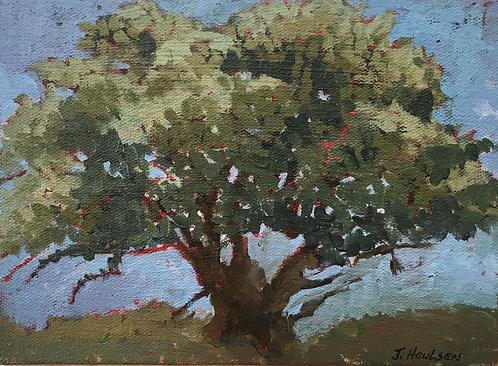 JoAnne Houlsen: Chadwick House Tree