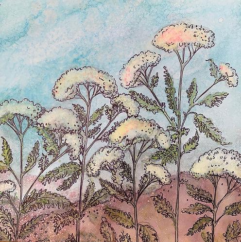 Jennifer Maffett: Yarrow Clouds