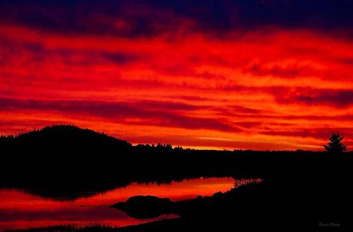 Susan Moore: Passamaquoddy Sunset - Scarlet