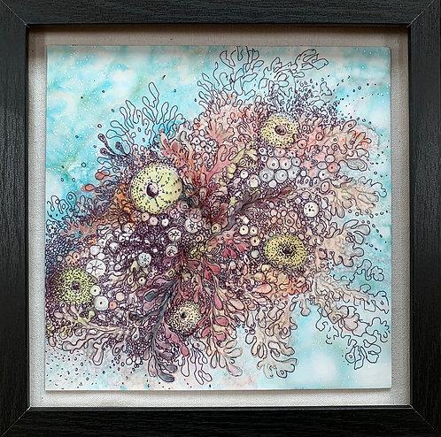 """Jennifer Maffett: """"Urchin Tapestry"""""""