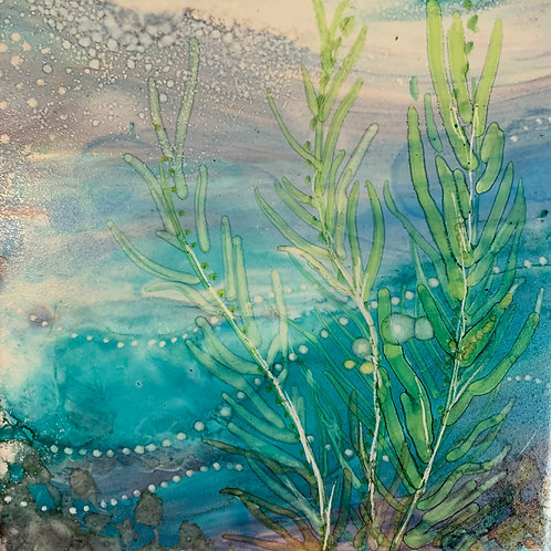Kelp 1 by Jennifer Maffett