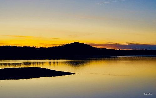 Susan Moore: Passamaquoddy Sunset - Golden