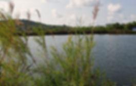 pict lake.jpg