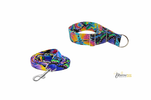 Colorful butterfly collar