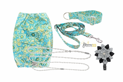 Puppy set - turquoise II