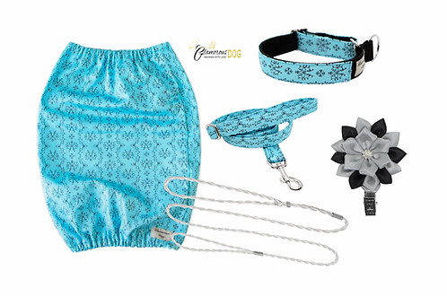 Set for puppy - turquoise
