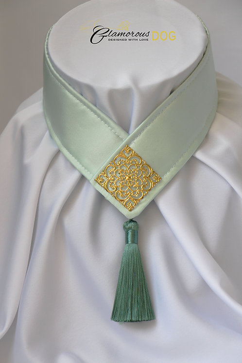 Collar for finals - light green with metal plate