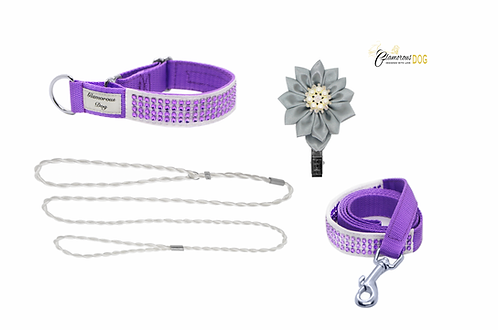 Smaller set for puppy - purple