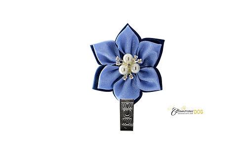 Elegant blue