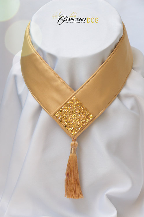 Collar for finals - yellow with metal plate