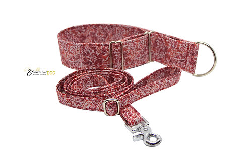 Adjustable collar red with the possibility of a leash