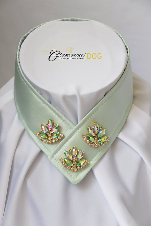 Collar for finals - light green with jewel 2